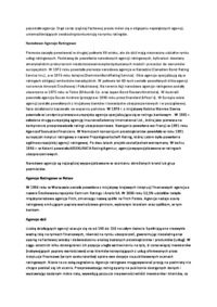 referat-agencje-ratingowe